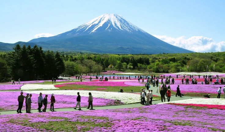 """Fuji-Hakone-Izu National Park, Japan: Southwest of Tokyo, this national park is one of Japan's most popular. A dormant volcano more than 12,000 feet high, Mt. Fuji is, according to Fodor's """"utterly captivating in the ways it can change in different light and from different perspectives. Its symetry and majesty have been immortalized by poets and artists for centuries."""" It is also often shrouded in clouds of spring and summer."""