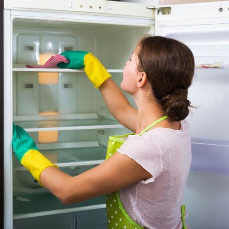 25 best ideas about old refrigerator on pinterest old. Black Bedroom Furniture Sets. Home Design Ideas