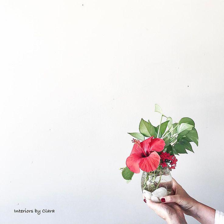 Saturday is always with flowers. Tropical beautiful red hibiscus for you, friends💋Sobota to zawsze świeże kwiaty. Tropikalny piękny czerwienią hibiskus dla Was💋. #handsinframe #handsandflowers #saturdayvibes #flowerporn #flowerpower #styling #homestyling #tv_streetlife #stilllife #thehappynow #simplethingsmadebeautiful