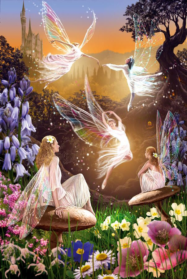 ≍ Nature's Fairy Nymphs ≍ magical elves, sprites, pixies and winged woodland faeries - Fairy Ballet by Garry Walton