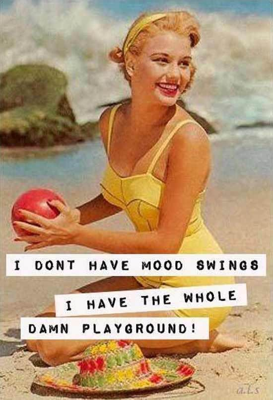 Sarcastic 1950's Housewife Memes ~ Sarcasm~ Mood swings playground