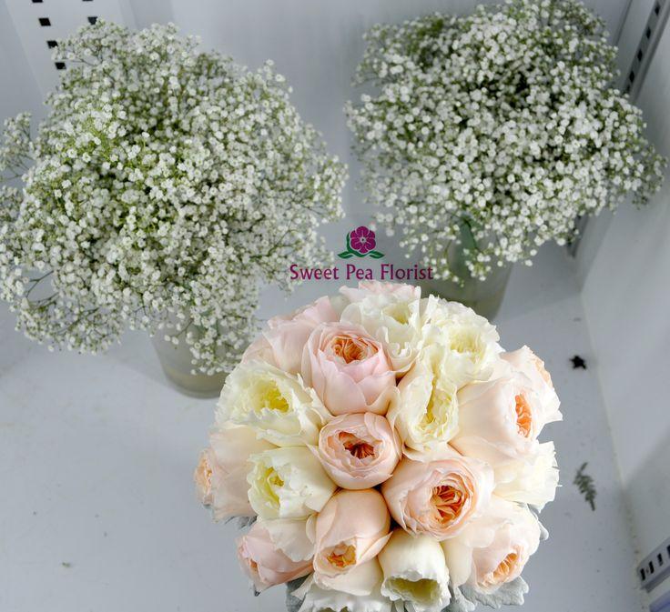 baby breath. David austin roses