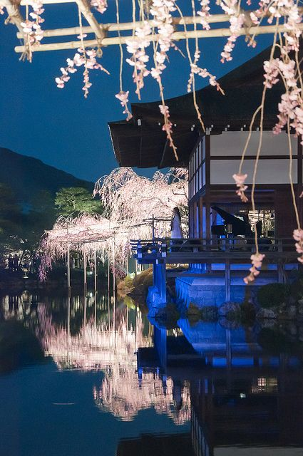 Kyoto garden Look ! This sence is so wonderful and likes a dream and i wish i can go down there!