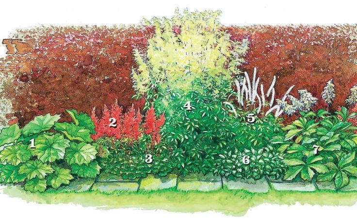 Schmale Beete effektvoll bepflanzen
