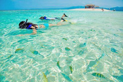 Snorkeling in Cayo Arena, Dominican Republic