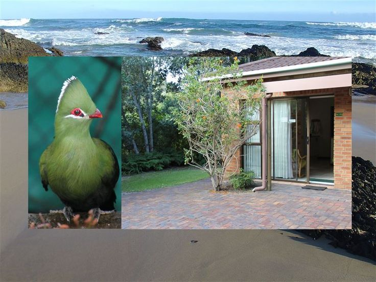Sea Why - Sea Why is a self-catering apartment with private facilities and a separate entrance, situated in Nature's Valley.  Sea Why is situated within an area of exceptional beauty, the Tsitsikamma, the largest ... #weekendgetaways #naturesvalley #southafrica