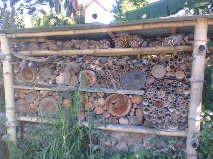 Permaculture Pilgrimage: Zaytuna Farm - beneficial insect 'hotel'