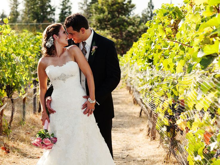 Winery Bride And Groom Photo Wedding Photography Summerhill Pyramid