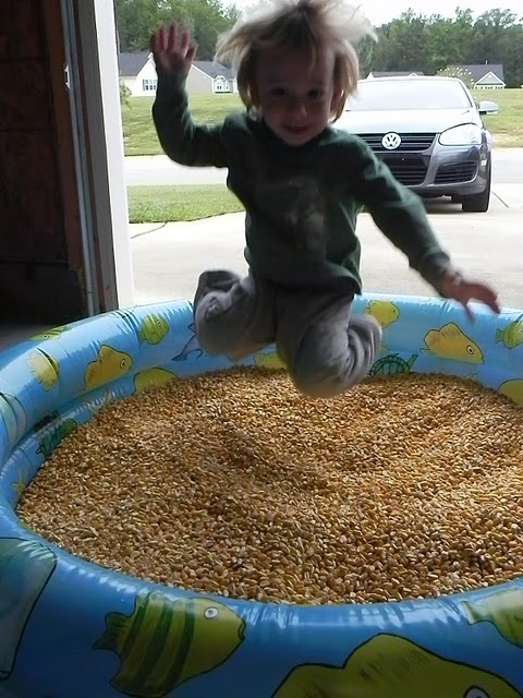 Great sensory activity, a baby pool filled with corn kernels.  Our county fair had a framed area made of straw bales filled with feed corn in the middle. It was packed with happy kids.