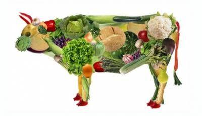 I migliori libri per i vegetariani