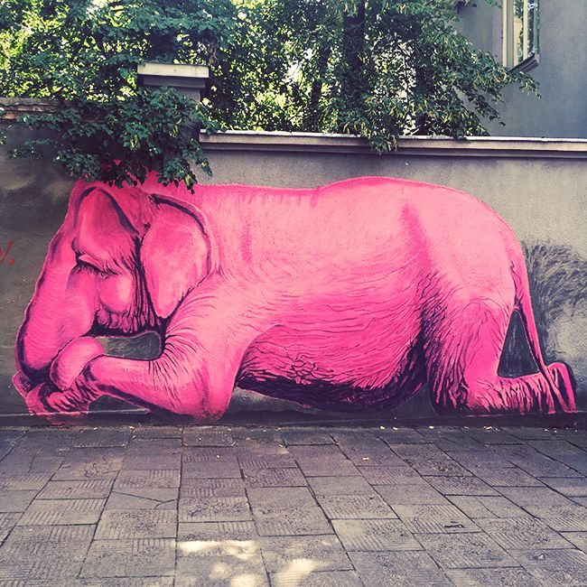 Pink Elephant - is one of the most popular graffiti's in Kaunas (Lithuania). Picture taken for WordPress weekly photo challenge (Fun).