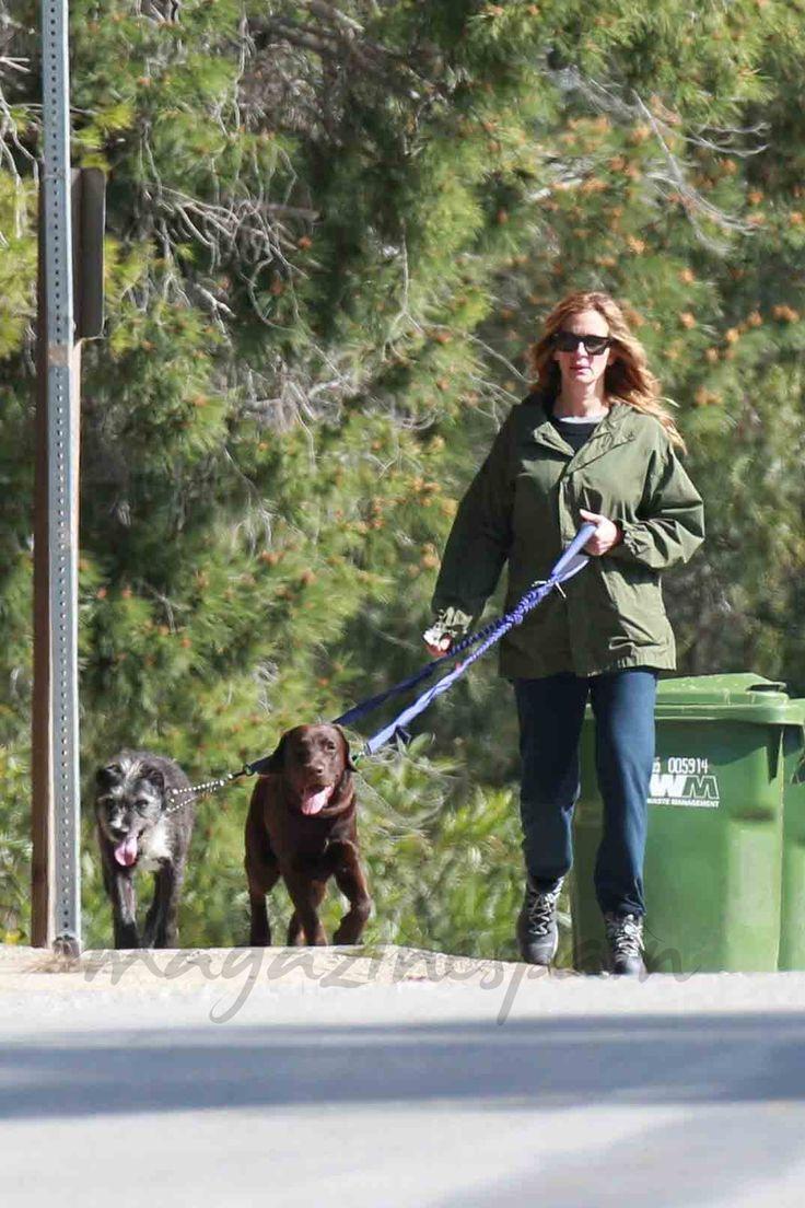 Lejos de Hollywood y alfombras rojas, Julia Roberts disfruta de su tiempo libre caminando con sus mascotas por los alrededores de su casa en Malibú.