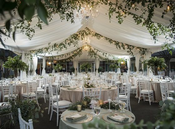 Beautiful wedding venues, screened vendors, fair calendar. Get prices, discounts, detailed info, great ideas, + wedding checklists from Here Comes The Guide.