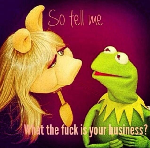 Image result for kermit miss piggy none of my business