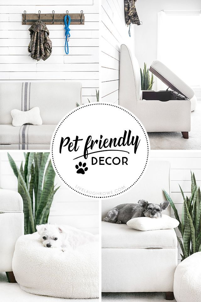 A Space Created Especially With Her Dogs In Mind Love It Kelly Of Live Laugh Rowe Mad Pet Friendly Furniture Pet Friendly Living Room Dog Friendly Apartments