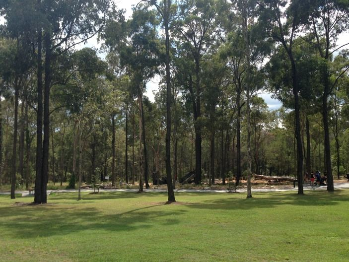 Read why Karawatha Forest Park is such a massive hit with Brisbane families! A complete review including pictures.