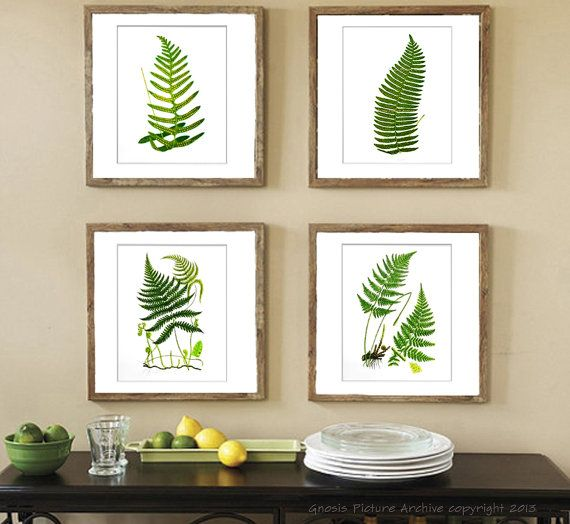 Fern Wall Art Print Set Of 4 Fern Wall Decor Woodland Wall Art Fern Wall Art  Antique Fern Botanical Decor Green Wall Decor