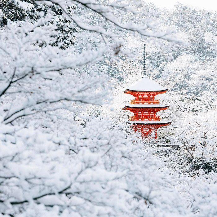 La beauté de Kyoto sous la neige - https://www.2tout2rien.fr/la-beaute-de-kyoto-sous-la-neige/