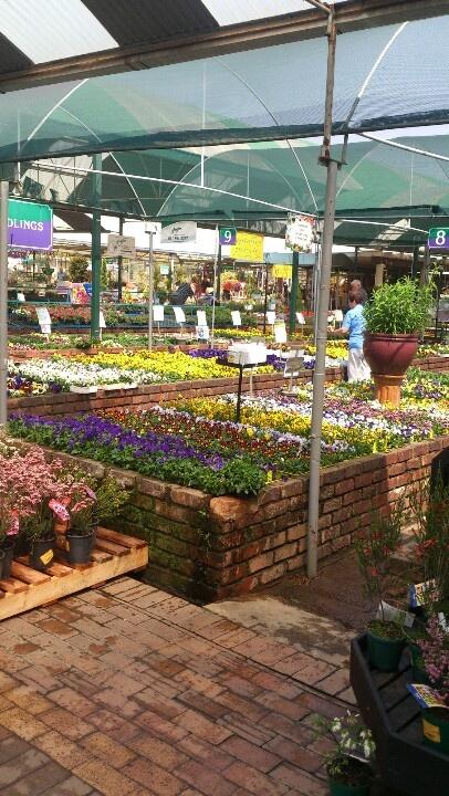 Spring Garden centre