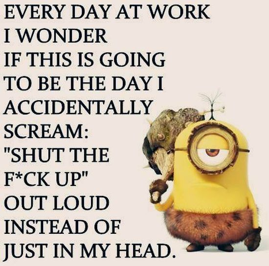Best Funny Work Quotes Ideas On Pinterest Work Day Humor - 16 hilarious pictures proving office humor best humor