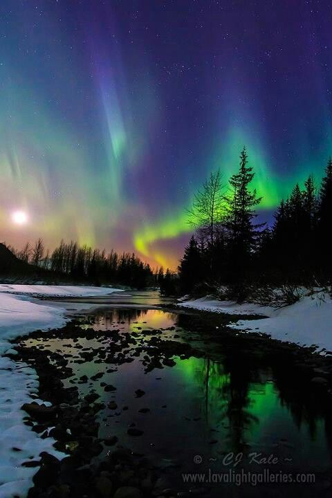 Northern lights in Alaska 2-5