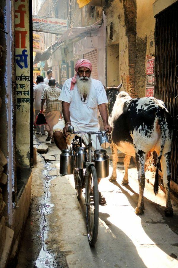 reise nach indien indienreise indische kultur straße