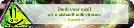 Denk voor uzelf als u zichzelf wilt vinden. - Socrates #filosofie