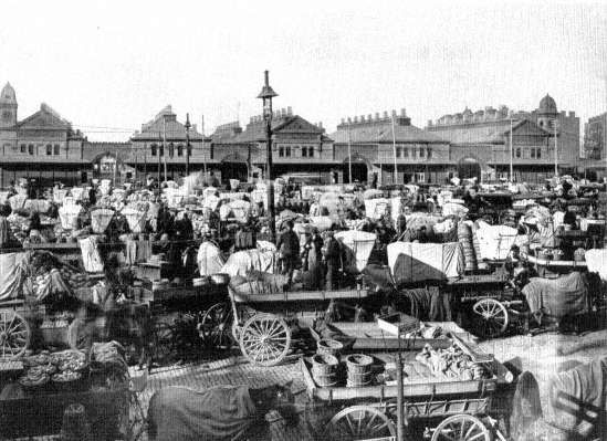 23. West Washington Market, New York, 1880s. As the city's population grew, markets expanded from old neighborhood stalls, where housewives ...