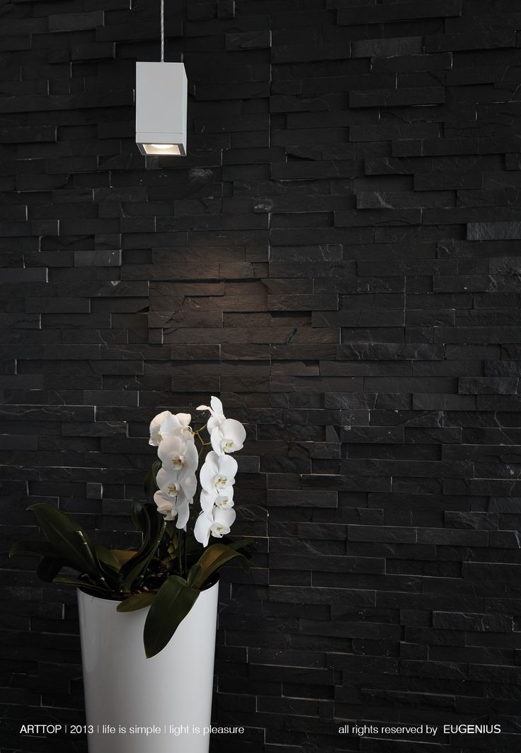 EUGENIUS. modern lighting fixtures, architectural interior lamps for home and office. white simple design of hanging lamp in contrast with black wall made by slate.