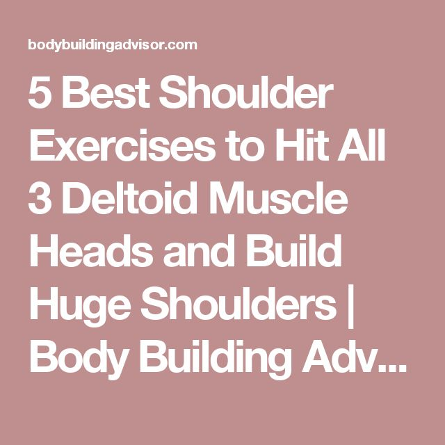 5 Best Shoulder Exercises to Hit All 3 Deltoid Muscle Heads and Build Huge Shoulders | Body Building Advisor