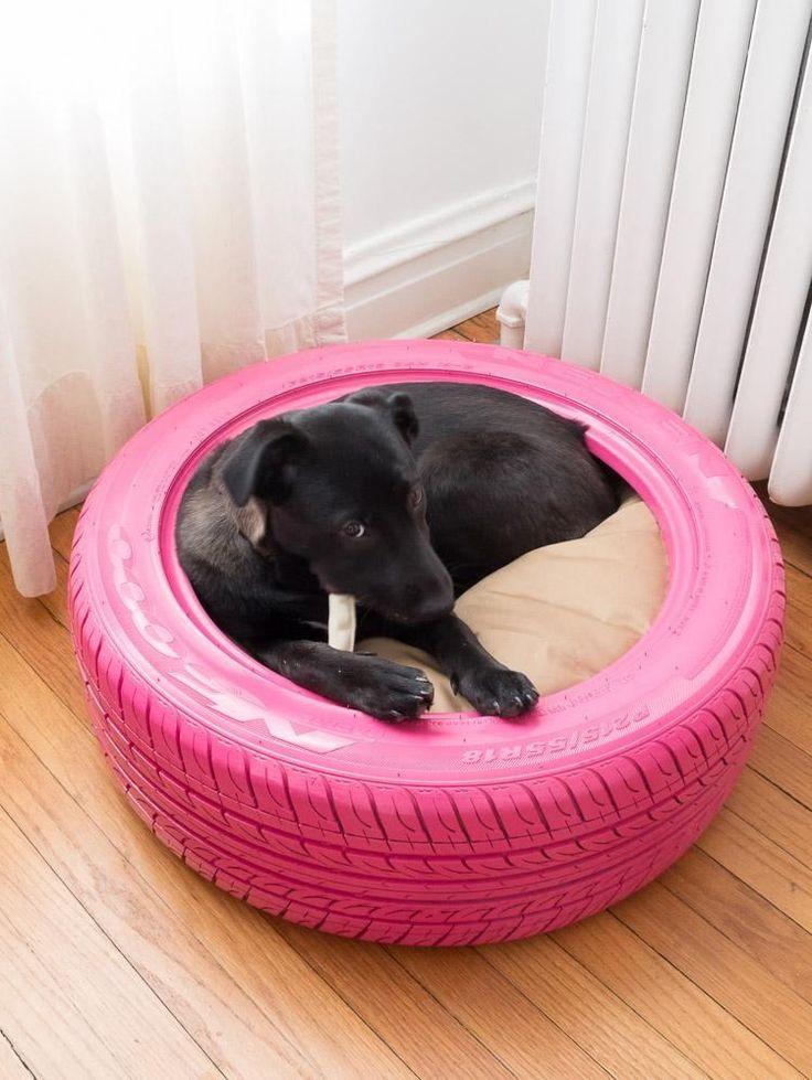 ein Hund hat neues kuscheliges Bett