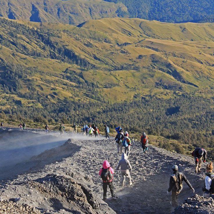 Descending Mount Rinjani Lombok Indonesia #ridge #outdoors #hiking #trekking #rinjani #gunung #gunungrinjani #pendaki #pendakiindonesia #mountains #volcano #valley #nature #naturelovers #lombok #indonesia #wonderfulindonesia