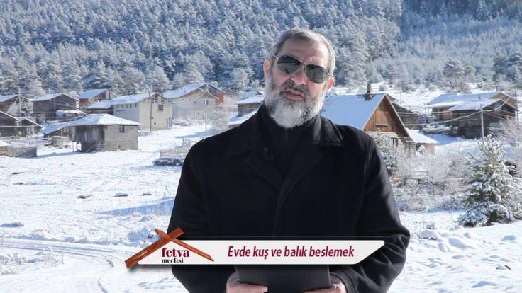 138) Evde kuş ve balık beslemek - Nureddin Yıldız - fetvameclisi.com