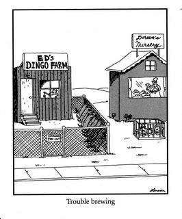Top Far Side Cartoons | Far side comics - Page 3 - TigerDroppings.com