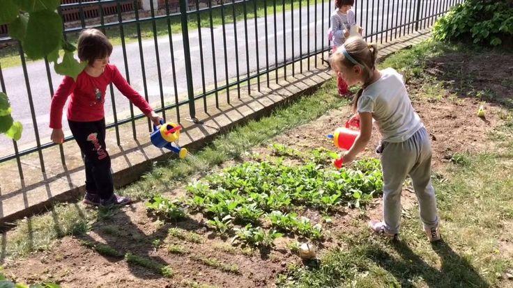 Zahradníci