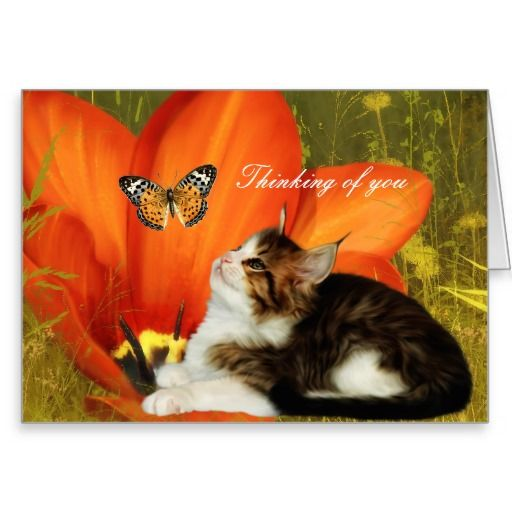 """Card White Cat Kitten Flowers """"Thinking of you"""""""
