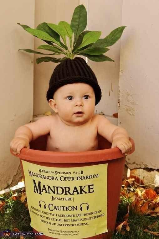 Harry Potter baby Halloween costumes.