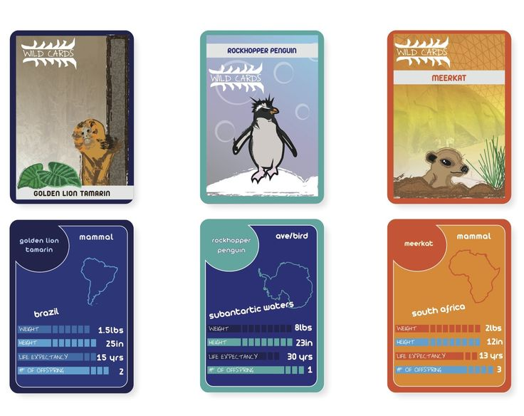 Wild Cards Trading Card Game   Card Design   Pinterest   Trading ...