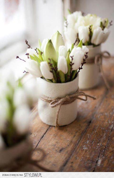 Białe tulipanki