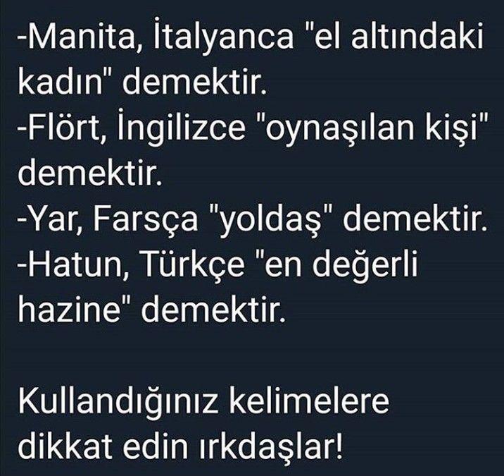 flört türkce anlami)