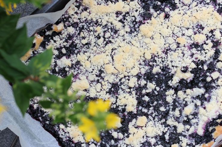 Czech Yeast Blueberry Cake With Crumble Topping #Baking, #Blueberry, #Cake, #Crumble, #Czech, #Fruit, #Homebaking, #Local, #Recipe, #Seasonal, #Sweet, #Traditional http://wp.me/p66AFB-gp