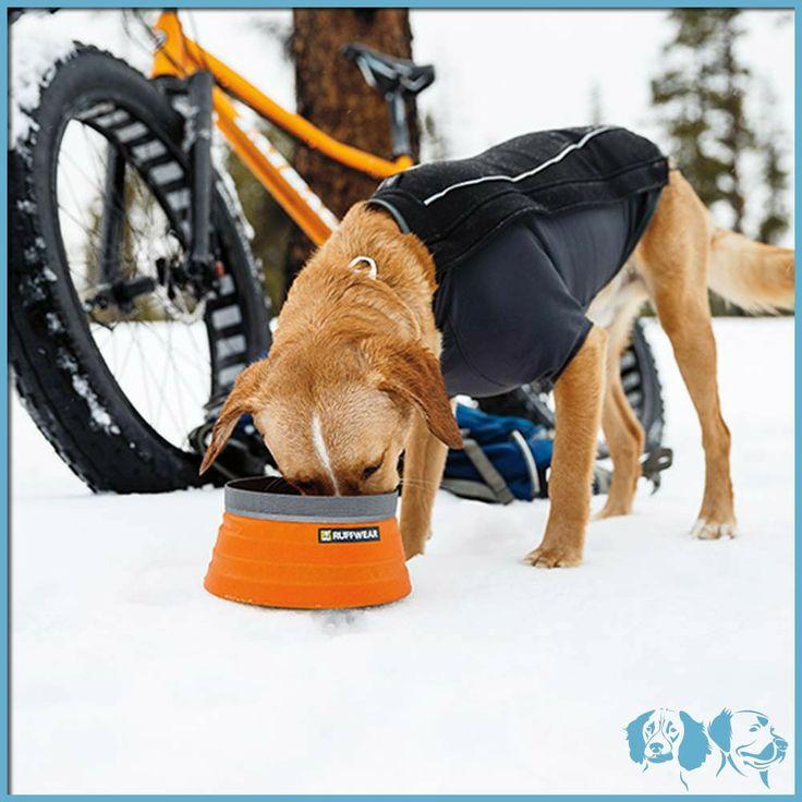 Bivy Bowl – Ruffwear - Ciotole - Dog Specialisthttp://www.dogspecialist.it/bivy-bowl-m-arancione.html
