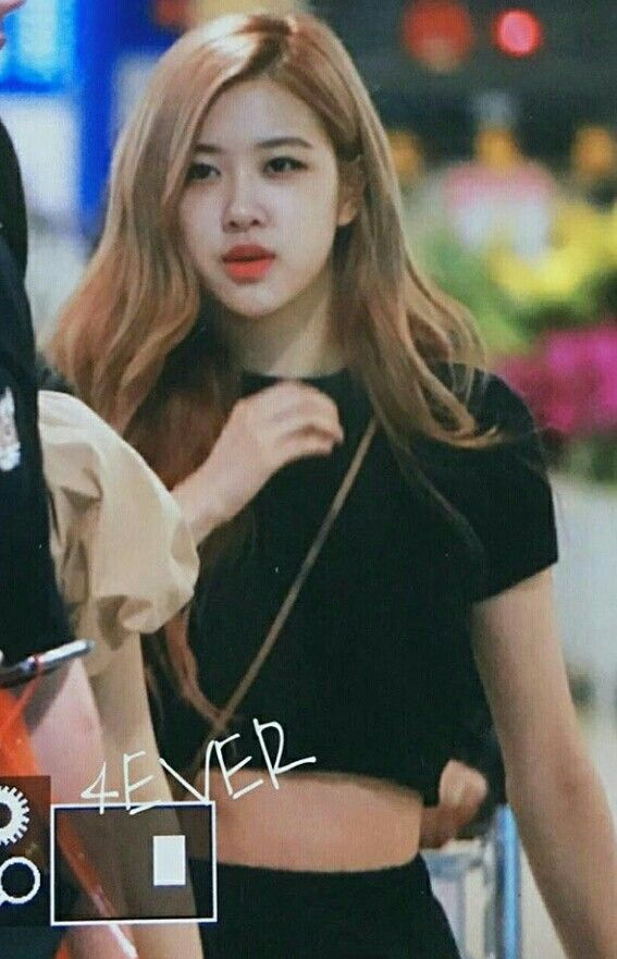 Beauty Cute Rose Blackpink In Airpot Fashion Blackpink