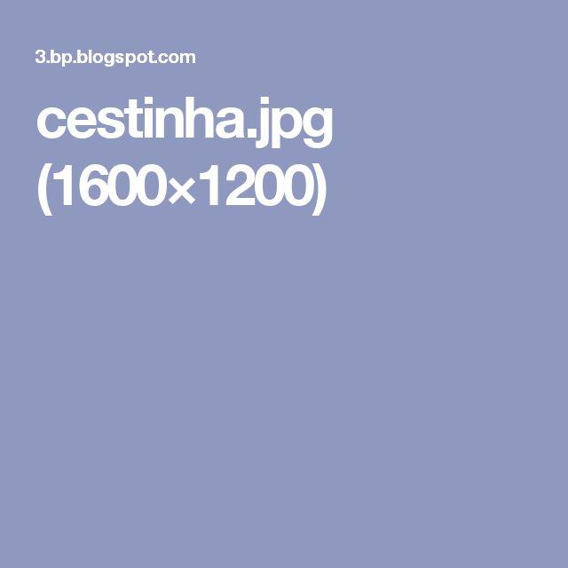 cestinha.jpg (1600×1200)
