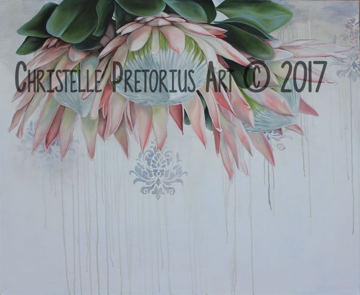 Artist: Christelle Pretorius. Beautiful composition of South African Proteas. Oil on Canvas. Subjected to copyright. For more information contact Christelle christelledv@live.com