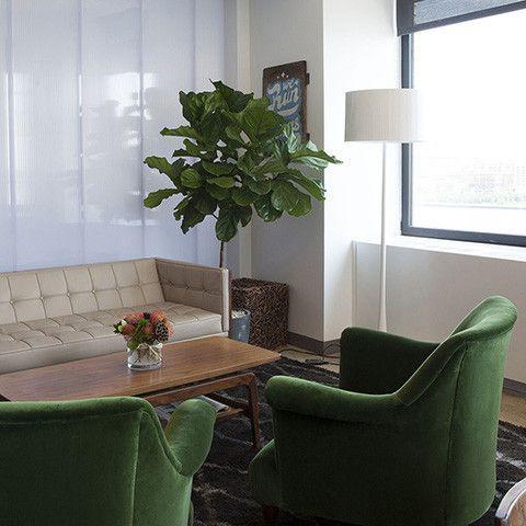 575 best |office plants & desk mates| images on pinterest | office