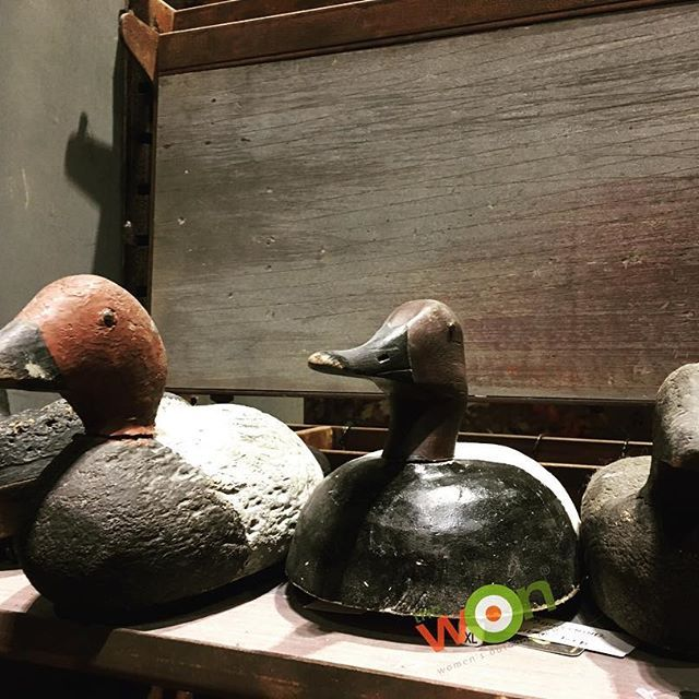 Oh my! I wish they would offer these lovely #vintage duck decoys for sale! Shopping today at @bassproshops #Springfield MO #duckywon