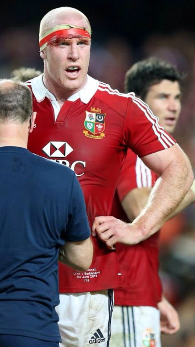 Paul O'Connell, Munster, Ireland, B & I Lions