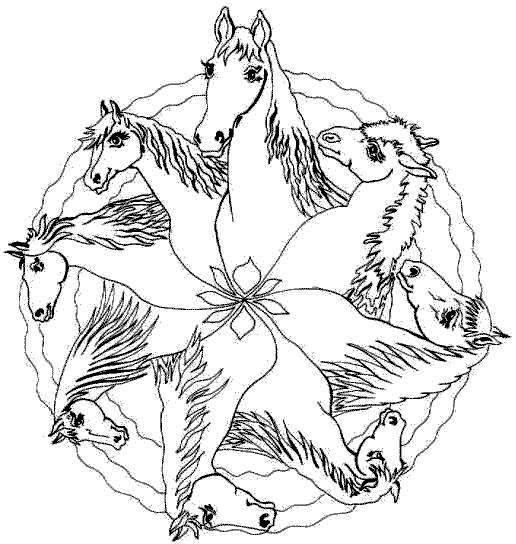 paarden (mandala)  kleurplaten  Pinterest  Mandalas