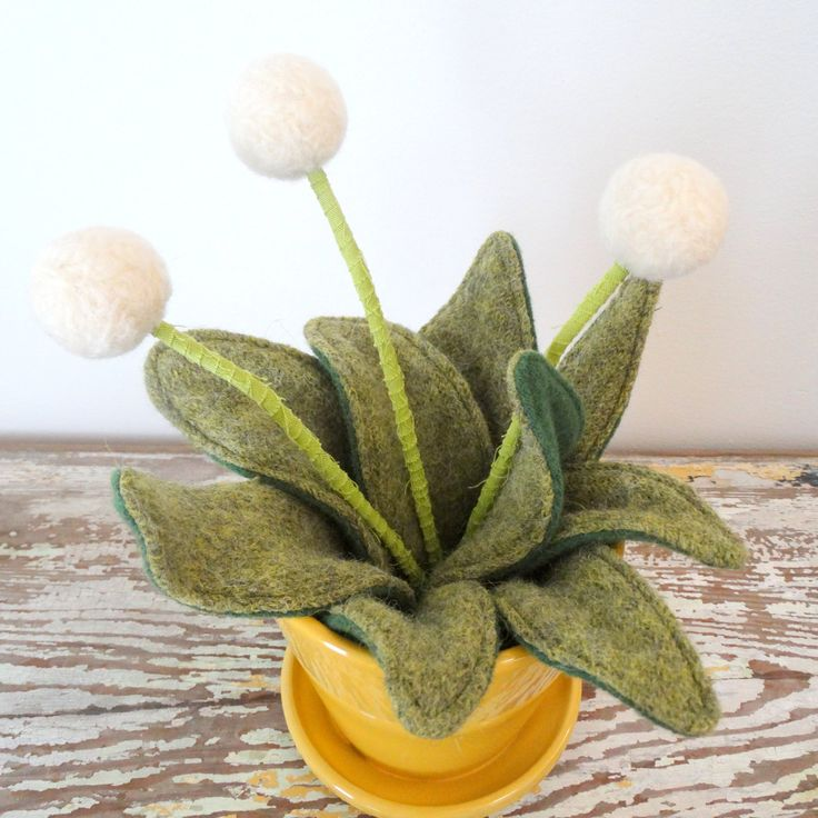 Knit Plant - Wool Plant - Potted Fake Plant - White Pom Pom Flower Centerpiece - Yellow Planter- Felt Flower - Modern Felt Dandelions by berryisland on Etsy